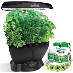 Miracle-Gro AeroGarden 6 LED with Gourmet Herb Seed Pod Kit * Review more details here : Gardening Tools