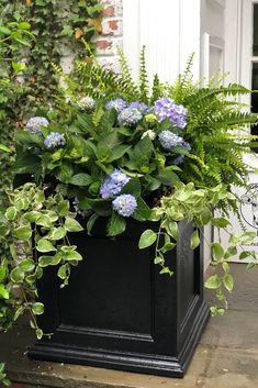 Have the look of wood without the upkeep with our high-grade polyethylene planters. Built-in water reservoir encourages healthy plant growth by allowing plants to practically water themselves. Outside Planters, Front Porch Plants, Hydrangea Landscaping, Driveway Landscaping, White Azalea, Annabelle Hydrangea, Plastic Planters, Planter Boxes, Planter Ideas