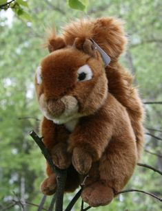 Orava - Kananlento/Osuuskunta Orrella Teddy Bear, Toys, Animals, Pray, Activity Toys, Animales, Animaux, Clearance Toys, Teddy Bears