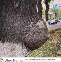 shenanigans by mother nature!