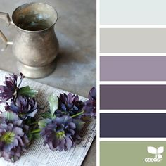 today's inspiration image for { color vignette } is by @petiteharvest ... thank you, Penny, for another wonderful #SeedsColor image share!