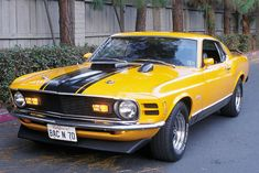 1970 Ford Mustang Mach 1 - Back In Photo & Image Gallery 1970 Mustang Mach 1, Ford Mustang Fastback, Mustang Cars, Ford Mustangs, Shelby Gt500, Classic Mustang, Us Cars, American Muscle Cars, Mellow Yellow