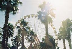 theme parksss