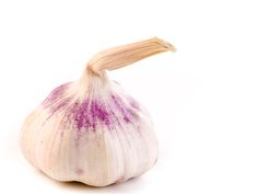 Garlic by Torstein Gamst