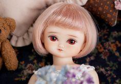 Peach Pink Daisy! ./ by bambola_world, via Flickr