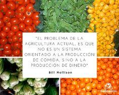 Problema de la agricultura actual