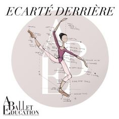 A Ballet EducationThe Body Positions of Ballet Ballet Basics, Ballet Class, Dance Class, Dance Studio, Ballet Quotes, Dance Quotes, Dance Tips, Dance Lessons, Dance Terminology