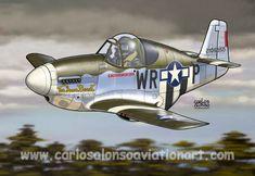 P-51B Mustang, Capt. Frederick R. Haviland Jr., US Army 8 AF, 355 FG, 354 FS, 1944