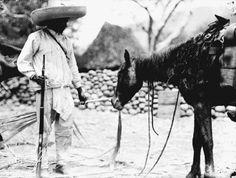 A Zapatista revolutionary sees to the feeding of his horse. 1914   (Fototeca Nacional del INAH)