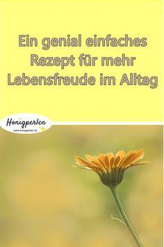 Jeden Tag zu deinem Lieblingstag machen - so funktionierts  #lebensfreude #alltag #glück #glücklich #psychologie  #selbstliebe #honigperlen