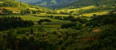 It is famous for its Brunello di Montalcino wine.