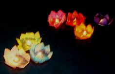 These are paper lanterns shaped like flowers that float on water very inexpensive would be great for the pond what do you think