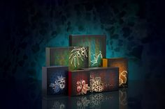 Its official the new Temple Spa Christmas collection has landed at the Linen Rooms. The prefect gift for him or her his festive season!