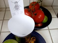 Fruit Fly Death Trap — Hot Post from One Year Ago...