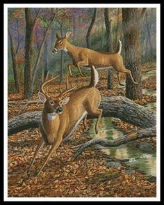 This counted cross stitch pattern was created from beautiful Artwork Copyright of Randy McGovern. Wildlife Paintings, Wildlife Art, Animal Paintings, Deer Paintings, Hunting Drawings, Wolf Poses, Whitetail Deer Pictures, Deer Wallpaper, Animal Magic