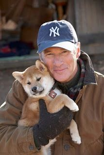 Richard Gere - Hachiko: A Dog's Story Hachiko Dog, Richard Gere Movies, Hachi A Dogs Tale, Cute Puppies, Cute Dogs, A Dog's Tale, Celebrity Dogs, Japanese Dogs, Famous Dogs