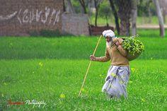 Life in the Village, Punjab, Pakistan