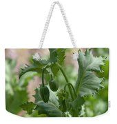 Oriental Poppy Buds Weekender Tote Bag Art Prints For Home, Fine Art Prints, Weekender Tote, Tote Bag, Zoom Conference Call, Got Print, Any Images, Art Techniques, Fine Art Photography