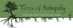 Trees of Antiquity - Great resource for fruit trees.