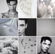 ANDY BIERSACK DAILY