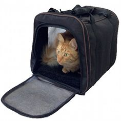 Pawfect PetPet CarrierLarge Soft Sided Airline Approved For TravelFor Cat And DogTop LoadingFoldable For StorageBlack *** Check this awesome product by going to the link at the image-affiliate link. #Offersfor PETS