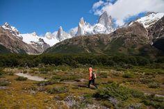 Patagonia Argentina - El Chalten . Entre bosque de ñires y lengas , puedes practicar trekking en paisajes surcados por rios de aguas cristalinas . Puedes caminar sin rumbo , abierto a lo que la naturaleza tiene para mostrarte . . . @swami1951