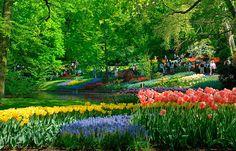 Lugares mais lindos do mundo: Jardim de Keukenhof, Holanda