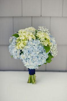 1000+ ideas about Green Hydrangea on Pinterest | White Roses, White Hydrangeas and Blue Hydrangea