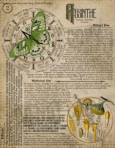 Absinthe Book of Shadows page, Ritual Poisonous Plants - Book of Shadows - Buch Magic Herbs, Herbal Magic, Wiccan Spells, Witchcraft, O Ritual, Absinthe, Poisonous Plants, Book Of Shadows, Herbalism