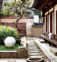 Image result for korean jar garden