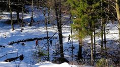 Cross-country ski trails in March