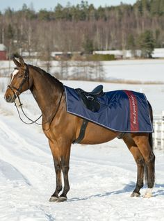 Horze Chicago Winter Riding Run - Velcro closure in front of the saddle. Cut around leg is adjusted so it won't affect leg movement.