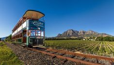 Franschhoek Wine Tram: hop-on hop-off wine tours by Cape Town wine tours operator. Wine farm tours in Cape Town, South Africa. South Africa Honeymoon, Move Over, Wine Safari, Boulder Beach, Tour Operator, Whale Watching, Africa Travel, Cape Town, Scenery