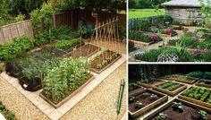 Villa Hottentotti: Puutarhaunelmia - kasvimaa