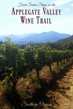 Four Scenic Stops on the Applegate Valley Wine Trail {Southern Oregon Travel} Canada Travel, Travel Usa, Travel Couple, Family Travel, Oregon Wine Country, Oregon Travel, Travel Guides, Travel Info, Travel Tips