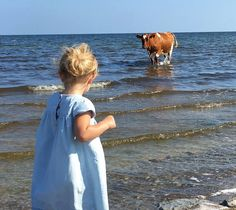 """""""Unexpected company…. #Öland"""" Picture and caption from the Facebook page of…"""