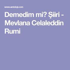Demedim mi? Şiiri - Mevlana Celaleddin Rumi