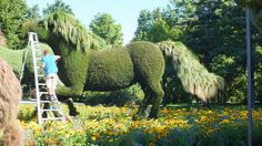 The Man Who Planted Trees (gardener trims horse) - Mosaiculture - Montreal Botancial Gardens