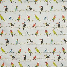 Prestigious Textiles Toucan Talk Tropical Fabric - - My World Collection Curtain Material, Curtain Fabric, How To Make Curtains, Curtains With Blinds, Tropical Fabric, Prestigious Textiles, Fabric Suppliers, Fabric Samples, Fabric Wallpaper