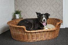 Wicker Dog Bed Basket, 100 cm, Extra Large