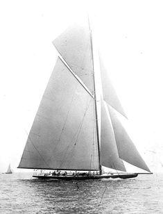 Shamrock IV — Wikipédia