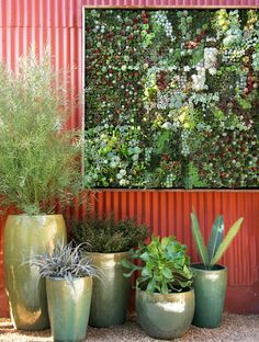 The pots are nice, but I love the vertical garden in the background! That is how outdoor art should be!