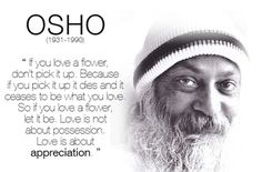 Lifehack - Love is about appreciation  #Appreciation, #Love, #Osho
