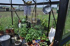 Brocante in onze tuinkas eigen foto