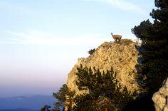 Le Mont-d'Or en Franche-Comté © CRT Franche-Comté, France