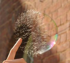 The Magnificence of High Speed Photography