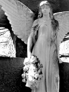 Angel...Berlin Cemetery!
