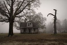 with eerie stillness and low hanging fog, the house sat amidst a field beckoning any who would dare go inside.oh the things they would find Abandoned Houses, Abandoned Places, Haunted Places, Estilo Dark, Arte Cyberpunk, Gothic Aesthetic, Nature Aesthetic, Over The Garden Wall, American Gothic