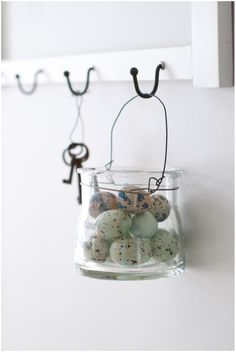 eggs in a hanging glass