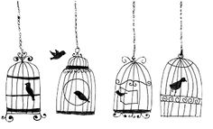 bird, draw, style, vintage  Bird in cage, bird outside the cage, free bird